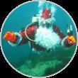 Подводные мероприятия